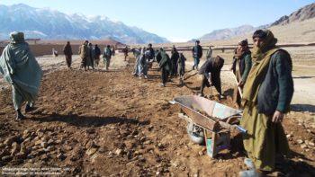 Enhance Community Contribution in Development
